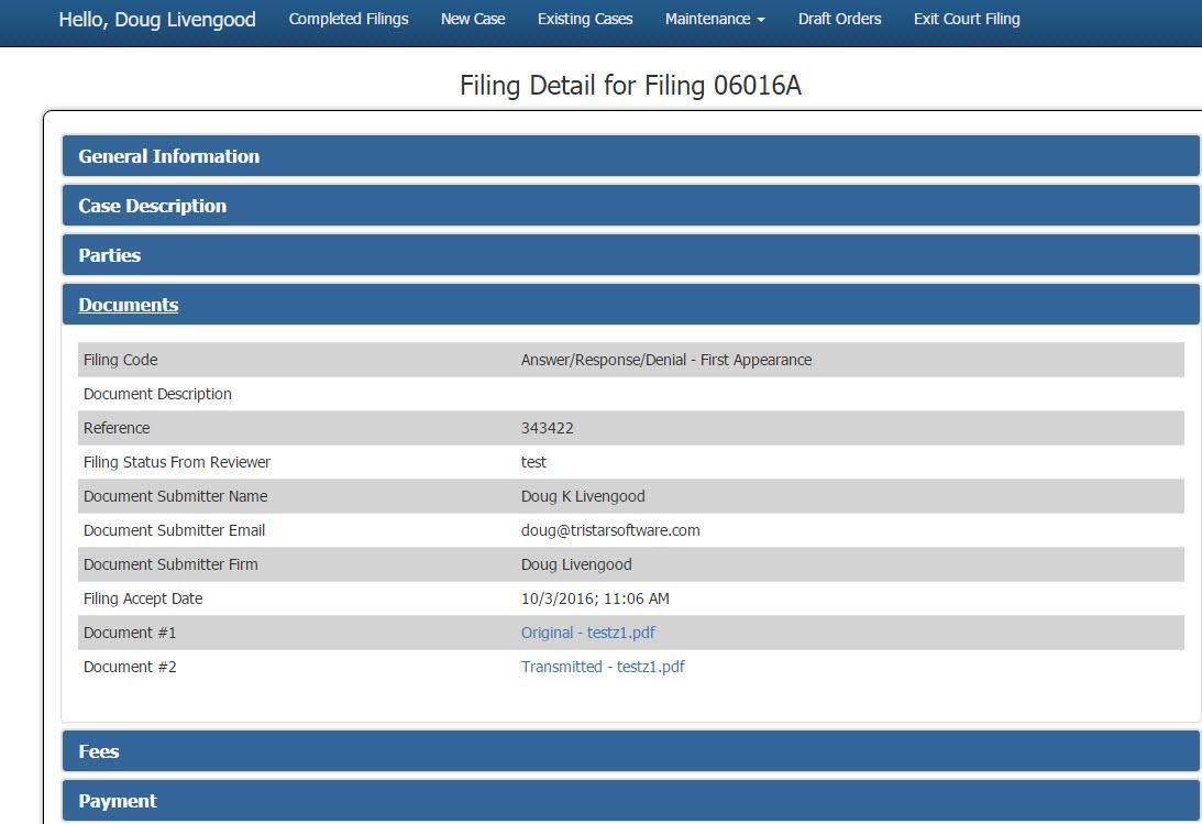 filing-details-initial